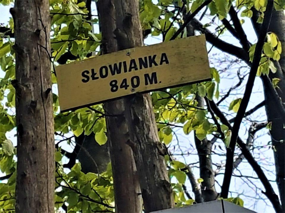 Slowianka-23